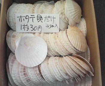 ホタテ貝殻