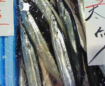 新物秋刀魚・函館産