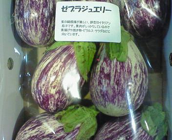 京都産茄子・ゼブラジュエリー