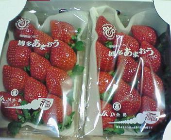 博多イチゴ・あまおう