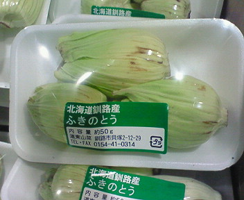 釧路産ふきのとう