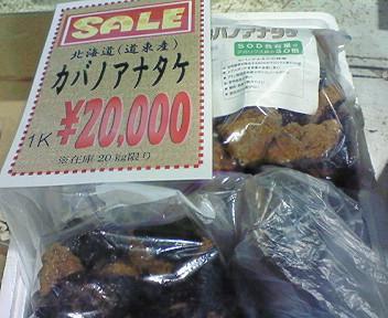 道東産カバノアナタケ