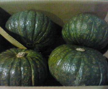 長沼産かぼちゃ