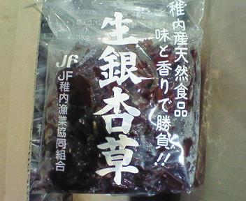 稚内産生銀杏草