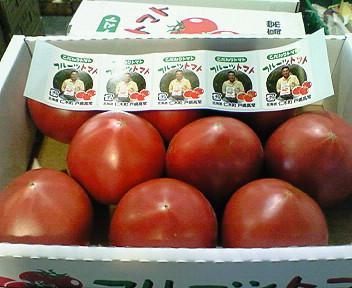 仁木産フルーツトマト