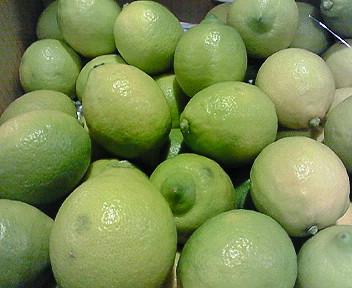 熊本産グリーンレモン