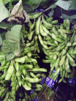 千葉産枝豆