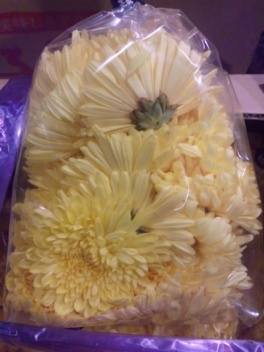 洞爺産食用菊