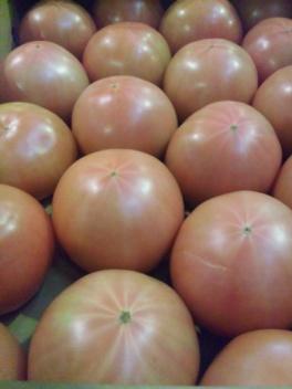 平取産トマト