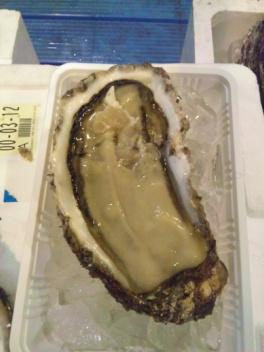 大分産岩牡蠣