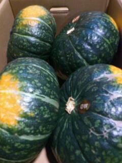 北広島産味平かぼちゃ