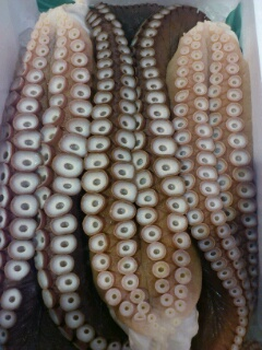 釧路産蛸足