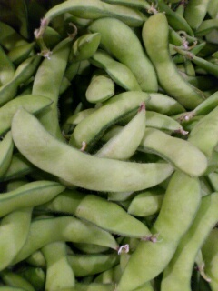 七飯産枝豆