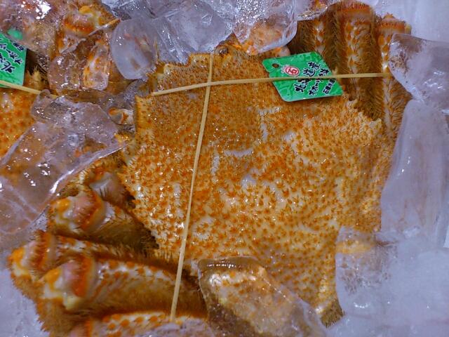 オホーツク毛蟹